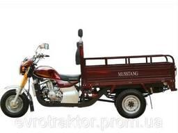 Мотоцикл грузовий Musstang MT200ZH-4V