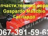 Измельчитель растительных остатков Chiara 200 Гаспардо (Gasp - фото 1
