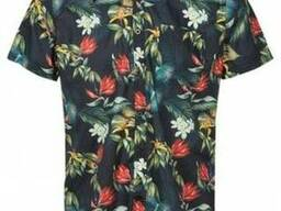 Мужские рубашки оптом Solid