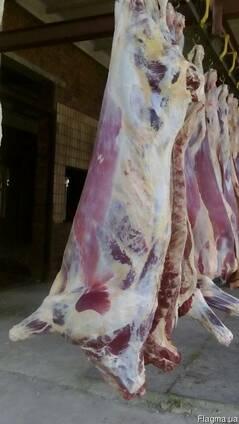 М'ясо яловичини в Україні