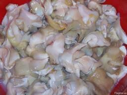 Мясо хищного молюска ропана
