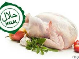 Мясо курицы халял