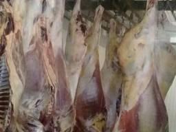 Мясо Полутуши