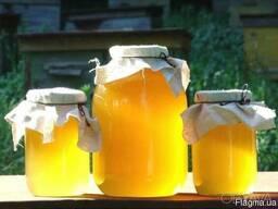 Мёд, натуральный, целебный, пасека, недорого, мед, бджоли