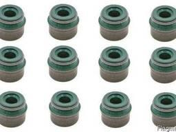 Набір сальників клапанів DAF XF105