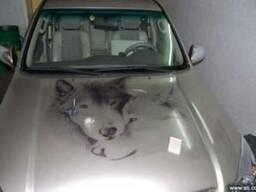 Наклейки на автомобиль
