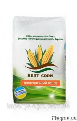 Насіння кукурудзи Дніпровский 181 СВ (ФАО 180)