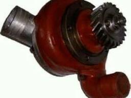 Насос водяной (помпа) (Т-130, Т-170), 06-08-140СП