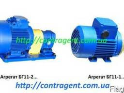 Насосные агрегаты БГ11: БГ 11-11А, БГ11-11, БВГ11-11А, 11-22