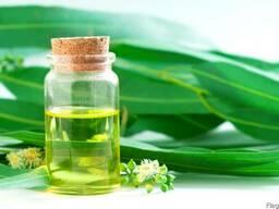 Натуральное масло Эвкалипта, 1 литр