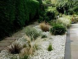 Белая речная галька, декоративный натуральный камень 4х7см