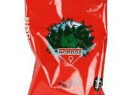 Nordox 75 WG (Нордокс) контактный фунгицид для защиты от пар