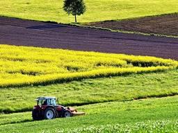 Земельный участок, ферму, готовый бизнес с сх. землей от 15 га в Одесской, Николаевской об