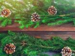 Новогодние сосновые шишки для декора - фото 2