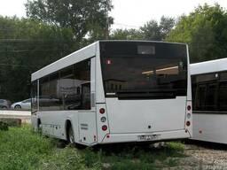 Новый автобус МАЗ 226 063 - фото 2