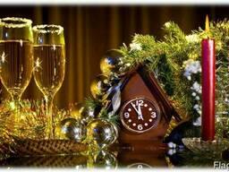 Новый год на загородной базе
