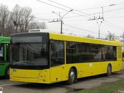 Новый пригородный автобус МАЗ-203169