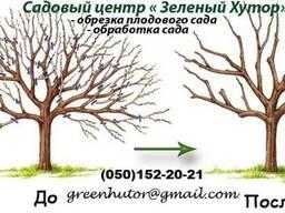 Обрезка плодового сада, декоративных кустов и деревьев. Борисполь , Киевская область.
