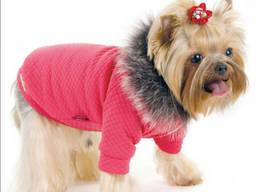 Одежда для собачек, толстовка, маленькие собачки