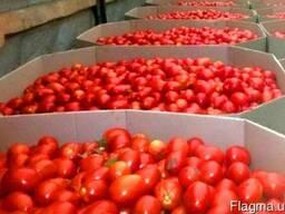 Октабины для помидоров