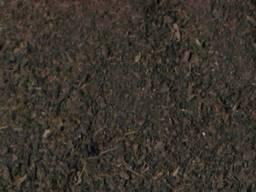 Органическое пылеугольное торрефикационное топливо