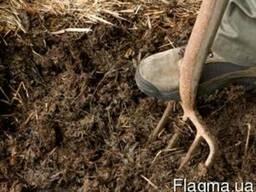 Органическое удобрения для сада и огорода осенью