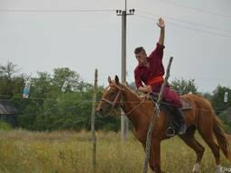 Отдых с казаками на хуторе Галушковка!