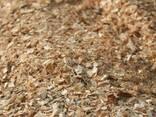 Отходы пилорамы: дрова, тырса, опилки - Лес, пиломатериалы - фото 4