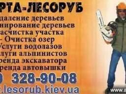 Откачка воды Киев