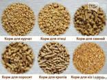 Отруби пшеничные гранулированные. - фото 2