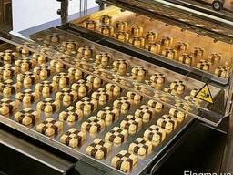 Отсадочные машины для производства печенья