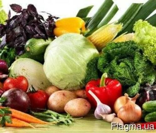 Семена овощи