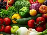 Овощи Фрукты оптом с доставкой - фото 1