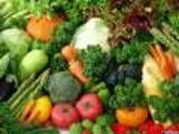 Овощи: картофель, свекла, морковь и лук