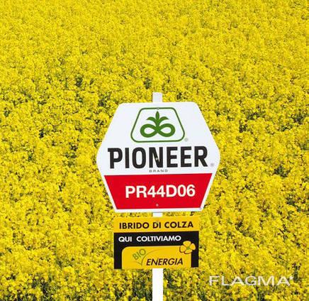 Озимый рапс Brevant (Pioneer) ПР45Д06, PХ113 (Maximus)
