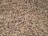 Паливні гранули - фото 1