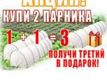"""Парник """"Щедрый урожай"""" 4 м. плотность 42г/м2 (мини теплица) - photo 8"""