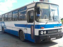 Пассажирские перевозки Икарус 25 мест