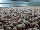 Печь для жарки семечек, орехов - фото 3