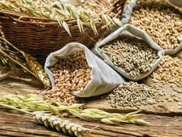 Переработка зерна и производство круп