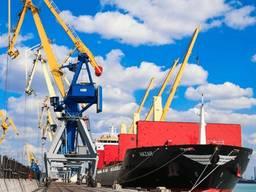 Перевалка сыпучих и наливных грузов в порту Южный