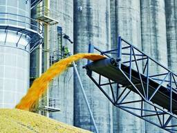 Перевалка зерновых, брокерские услуги, стафировка, фасовка