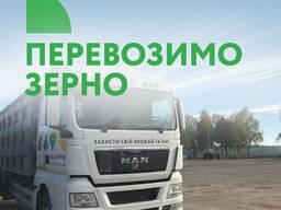 Перевезення зерна, перевозка зерна, траспортирование
