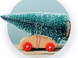 Перевозка, доставка - елки, ялинки