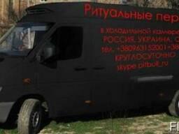 Перевозка груз 200 микроавтобус с холодильной камерой.