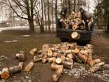 Перевозка груза автомобилем ЗИЛ (самосвал) г/п 5 т. - фото 3