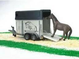 Перевозка животных - Лошадей и КРС по Украине