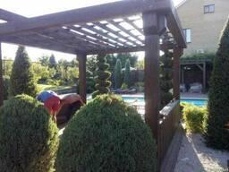 Пергола деревянная для загородного дома