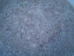 ПЭТ пыль (Pet, crushed preform), отходы полимеров