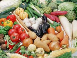 Планриз - эффективный биопрепарат против заболев растений